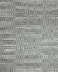 Scalamandre Aspen Brushed Tan Fabric