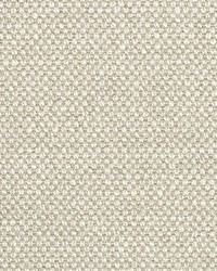 Scalamandre Aspen Brushed Wide Almond Fabric