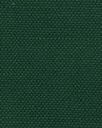 Scalamandre Aspen Brushed Wide Forest Fabric