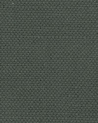 Scalamandre Aspen Brushed Wide Shadow Fabric