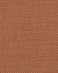 Scalamandre Aspen Brushed Wide Blossom Fabric