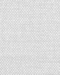 Scalamandre Aspen Brushed Wide Dove Fabric
