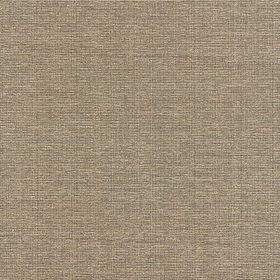 Scalamandre THOMPSON CHENILLE TAUPE Search Results