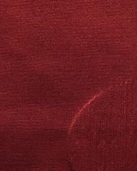 Scalamandre Solo Swan Fabric