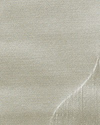 Scalamandre Solo Silver Dollar Fabric