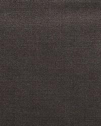 Scalamandre Solo Smoke Fabric