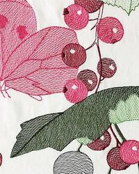 Scalamandre Marmelade Sorbet Fabric