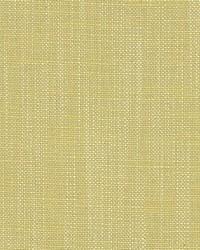 Scalamandre Eco Fr Heavy Citron Fabric