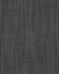Scalamandre Eco Fr Heavy Midnight Fabric