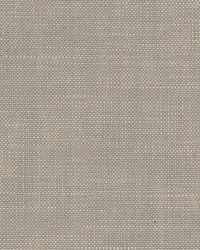 Scalamandre Eco Fr Heavy Taupe Fabric