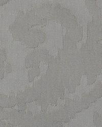 Scalamandre Debut Shadow Fabric