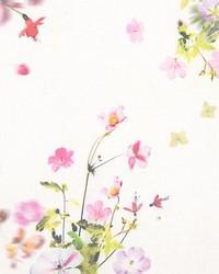Scalamandre Sommerwind Cs Summer Bouquet Fabric