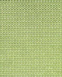 Scalamandre New Madison Pistacchio Fabric