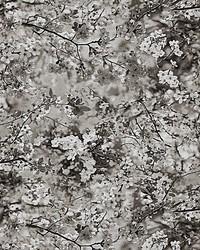 Scalamandre Sakura Tapestry Naturel Fabric