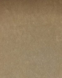 Scalamandre Sultan M1 Ecru Fabric