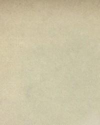 Scalamandre Sultan M1 Blanc Fabric