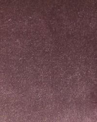Scalamandre Sultan M1 Glycine Fabric
