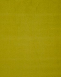 Scalamandre Pigment Tilleul Fabric