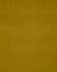Scalamandre Pigment Mordore Fabric
