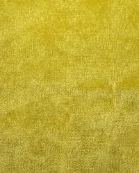 Scalamandre Sultan M1 Anis Fabric