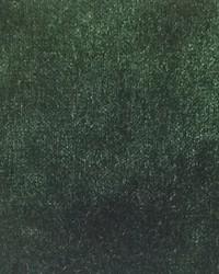 Scalamandre Sultan M1 Vert Fabric