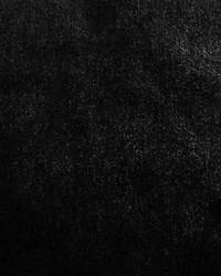 Scalamandre Sultan M1 Noir Fabric