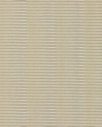 Scalamandre Wavelength Putty Fabric