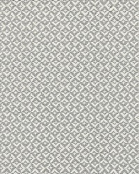Scalamandre Khiva Weave Pearl Grey Fabric