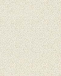 Scalamandre Risa Weave Birch Fabric