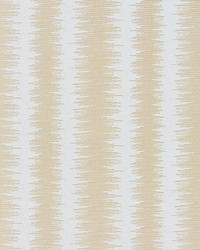 Scalamandre Konya Ikat Stripe Mineral Fabric