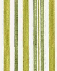Scalamandre Santorini Stripe Palm Fabric