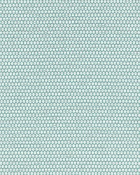 Scalamandre Corsica Weave Surf Fabric