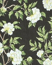Scalamandre Peonia Linen Print Onyx Fabric
