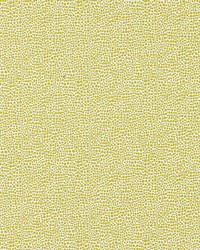 Scalamandre Shagreen Seagrass Fabric