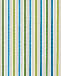 Scalamandre Leeds Cotton Stripe Ocean Palm Fabric