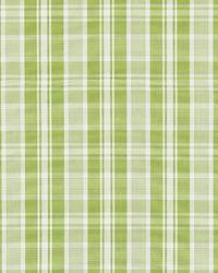 Scalamandre Preston Cotton Plaid Pear Fabric