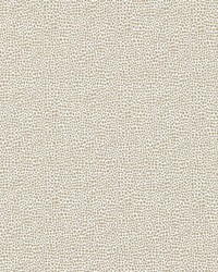Scalamandre Shagreen Pearl Grey Fabric