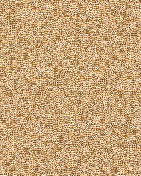 Scalamandre Shagreen Beige Fabric