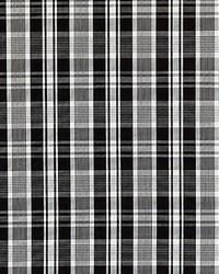 Scalamandre Preston Cotton Plaid Noir Fabric