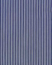 Scalamandre Kent Stripe Navy Fabric