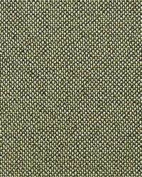 Scalamandre City Tweed Bonsai Fabric