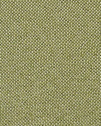 Scalamandre City Tweed Green Apple Fabric