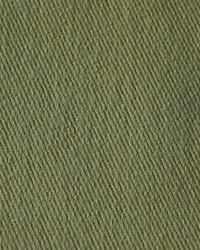 Scalamandre Eskimo Verde Salvia Fabric