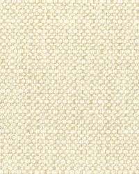 Stout Absent 3 Biscuit Fabric