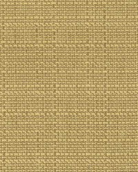 Stout Bixby 1 Gold Fabric