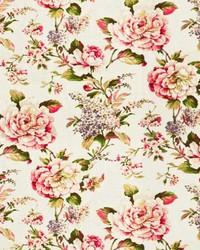 Stout Brio 1 Rosewood Fabric