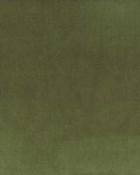 Stout Jitter 4 Chive Fabric
