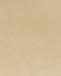 Stout Jitter 8 Camel Fabric