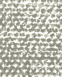 Stout Puccini 2 Dove Fabric