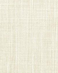 Stout Salon 5 Parchment Fabric